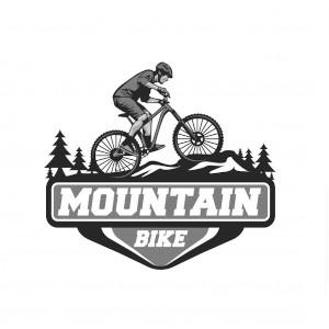 Mountain bike lift passes
