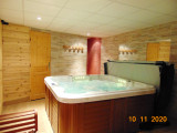 androsace-jacuzzi1-1949505