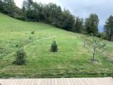 jardin-en-ete-chalet-apalosa-la-rosiere