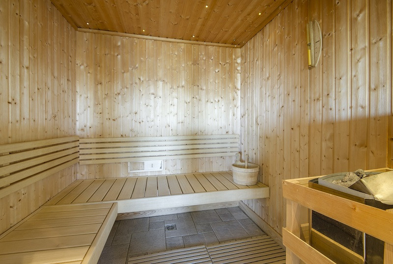 sauna-chalet-le-tyrol-la-rosiere-1272771