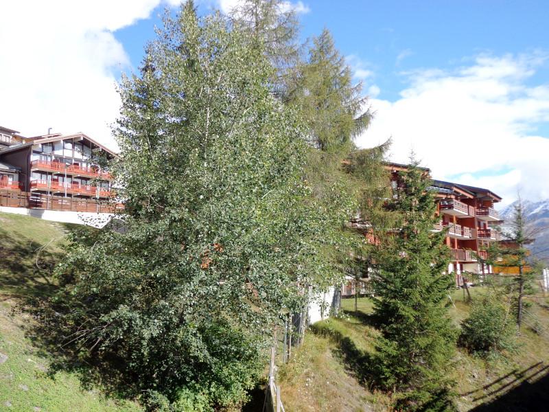 panorama-ete-appartement-NV008-la-rosiere-vue-2