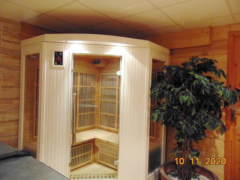 androsace-sauna1-1949512