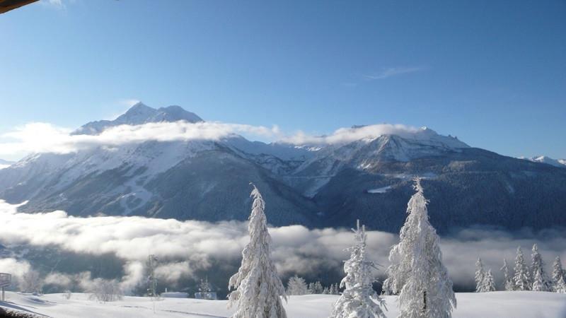vue-hiver-4555